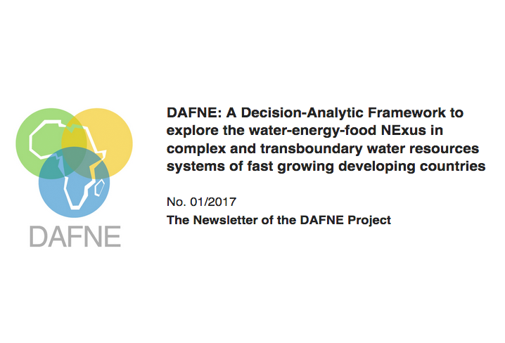 DAFNE newsletter | Issue 1